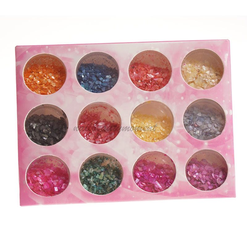 Nail Art Hancur Shell Powder Decoration Beauty Kit (D49)