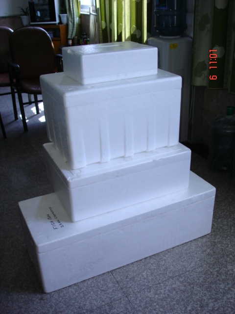 styrofoam molding machine
