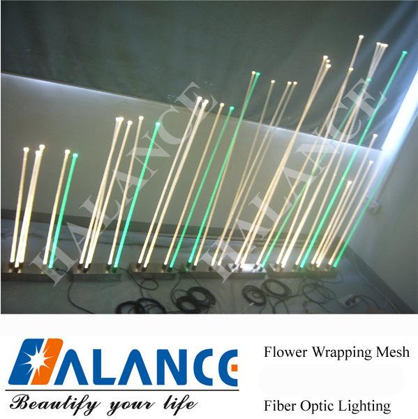 De decoratieve lichten van de optische vezel van het water voor de verlichting van het landschap - Riet voor struik ...