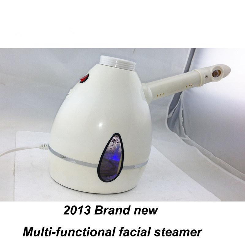 Steam machine for facial