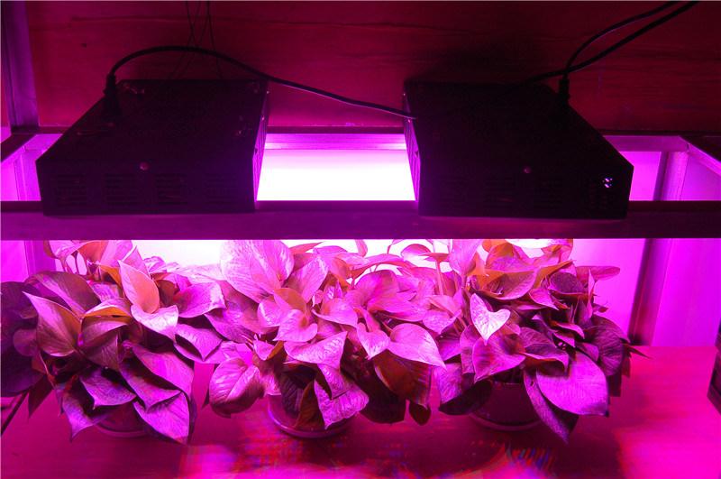 Full spectrum 165w led l vent la lumi re les syst mes de - Colture idroponiche in casa ...
