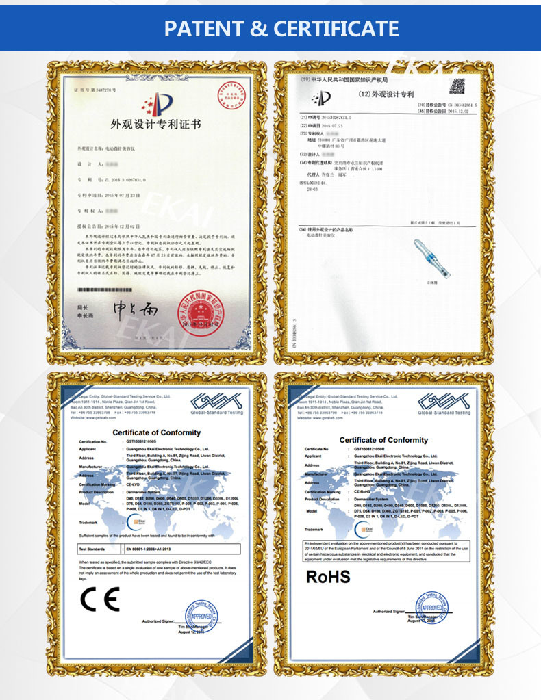 China Microneedle Therapy System Medical Grade Derma