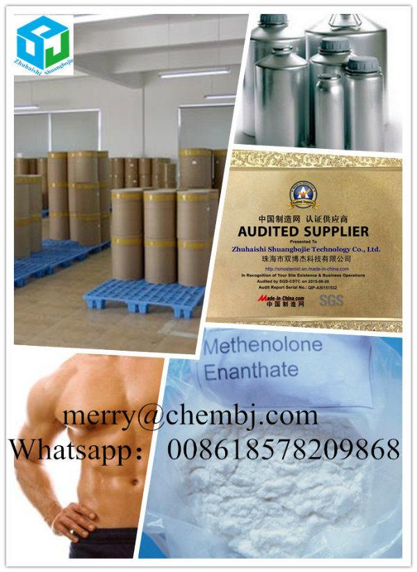 progestogenic steroids