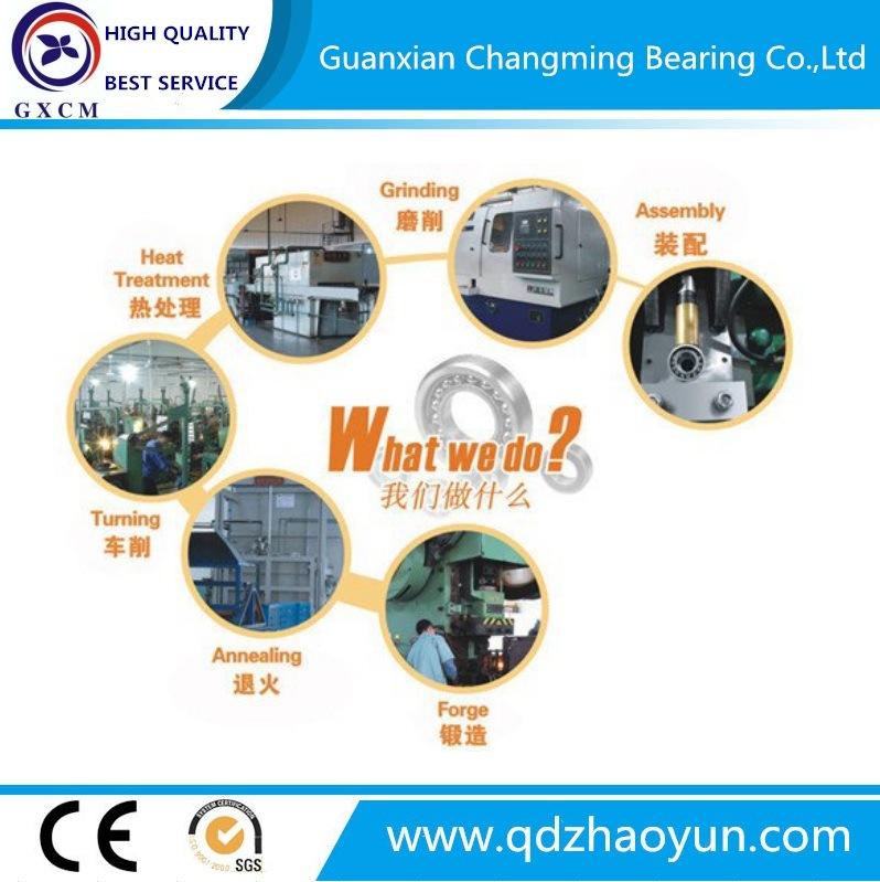 Chinese Manufacturer Needle Roller Bearing