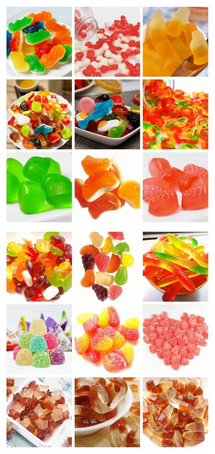 Gummy Bear Factory Tour