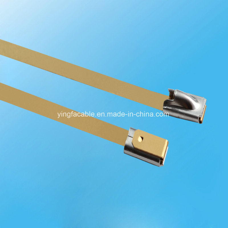 304 316 Stainless Steel Metal Locking Cable Ties with PVC Coated