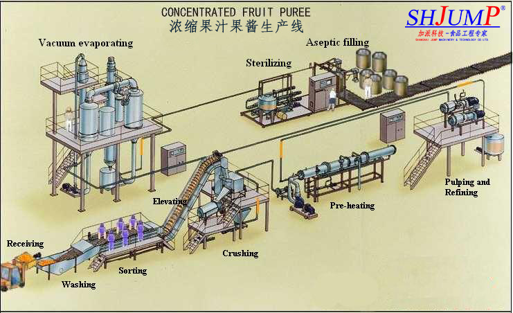 fruit and vegetable processing technology pdf