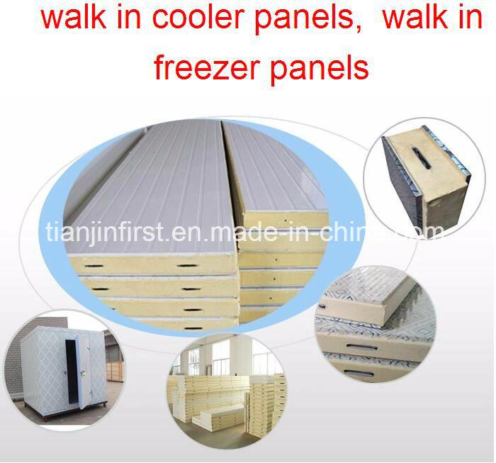 Tablero de aislamiento de la cámara fría del aislamiento Tablero de la sala fría de la PU