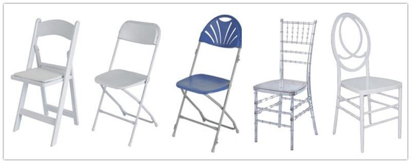 chaise transparente de napoleon de r sine acrylique chaise transparente de napoleon de r sine. Black Bedroom Furniture Sets. Home Design Ideas
