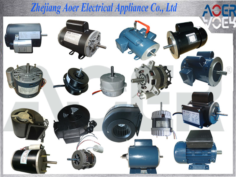China Asynchronous High Torque Low Rpm Electric Motors
