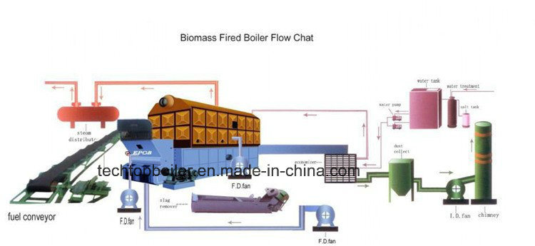 Double Drum Horizontal Chain Grate Coal Fired Steam Boiler