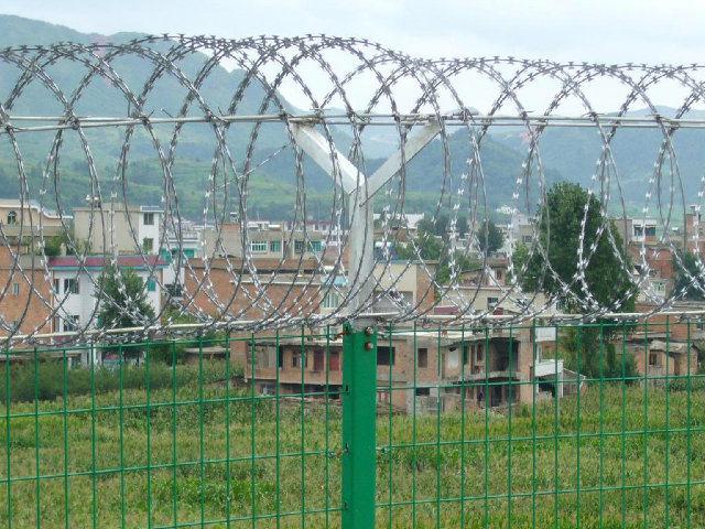 Hotsales Galvanized Razor Barbed Wire