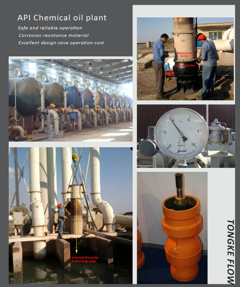 Electric Vertical Turbine Water Pump