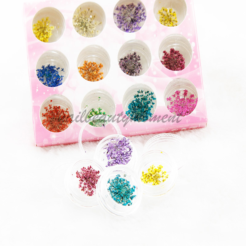 3D Dried Flowers for Nail Art Decoration (D54)