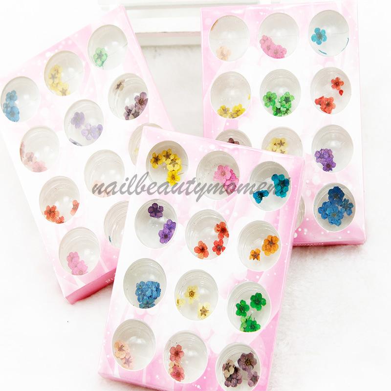 Комплект продуктов для украшения сухих цветов Nail Art (D55)