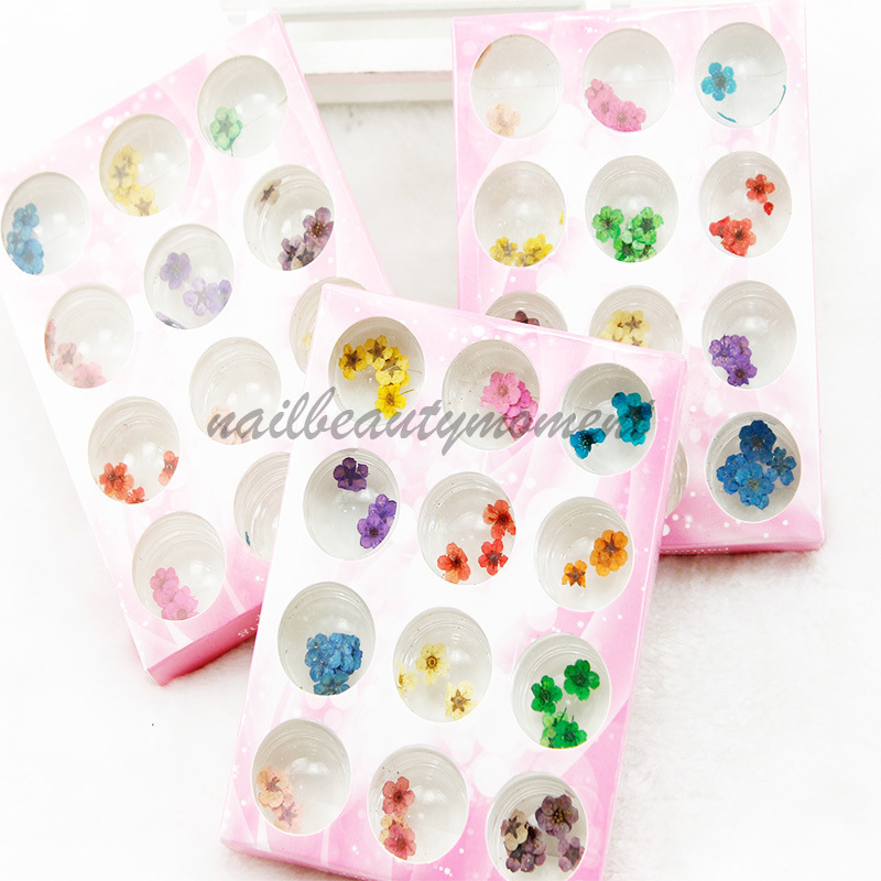 Nail Art Kering Bunga Dekorasi Produk Kit (D55)