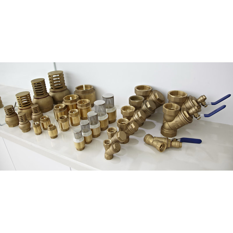 China brass y strainer filter check valve a