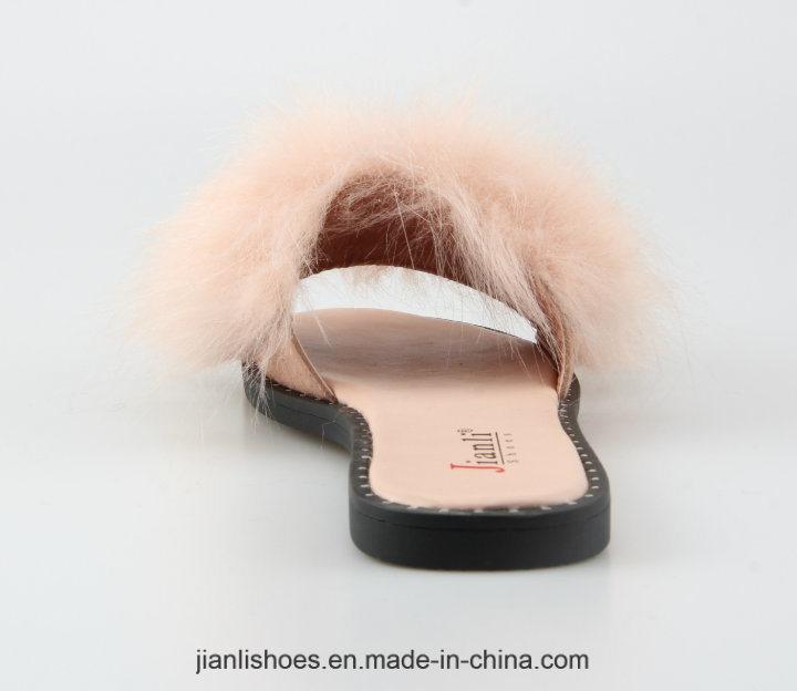 2018 Classic Women Shoe Flat Slipper for Fashion Lady (FSL010)