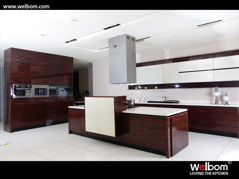 Lacquered Kitchen Cabinets kitchen cabinets lacquer finish