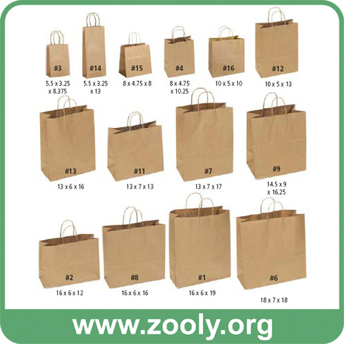 China Eco-Friendly Natural Brown Kraft Paper Shopping Gift Bags ...