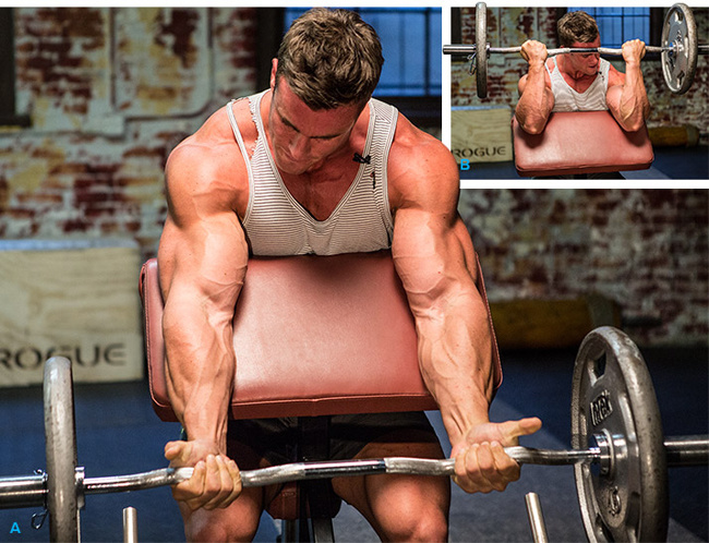 Cutting Cycles Steroids Cycles