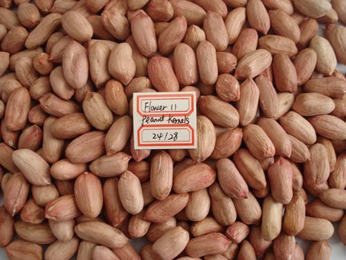 New Crop Red Skin Peanut Kernels