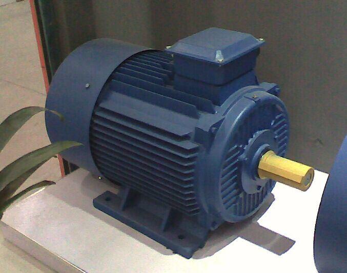 China Tefc Three Phase Electric Motor