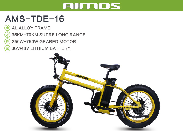 Front and Rear 500W Cheap Electric Bike E-Bike Electric Bike 1000W