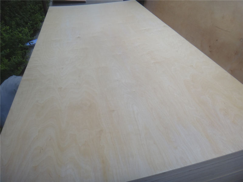 China timber best price russian laminated birch plywood for Birch wood cost