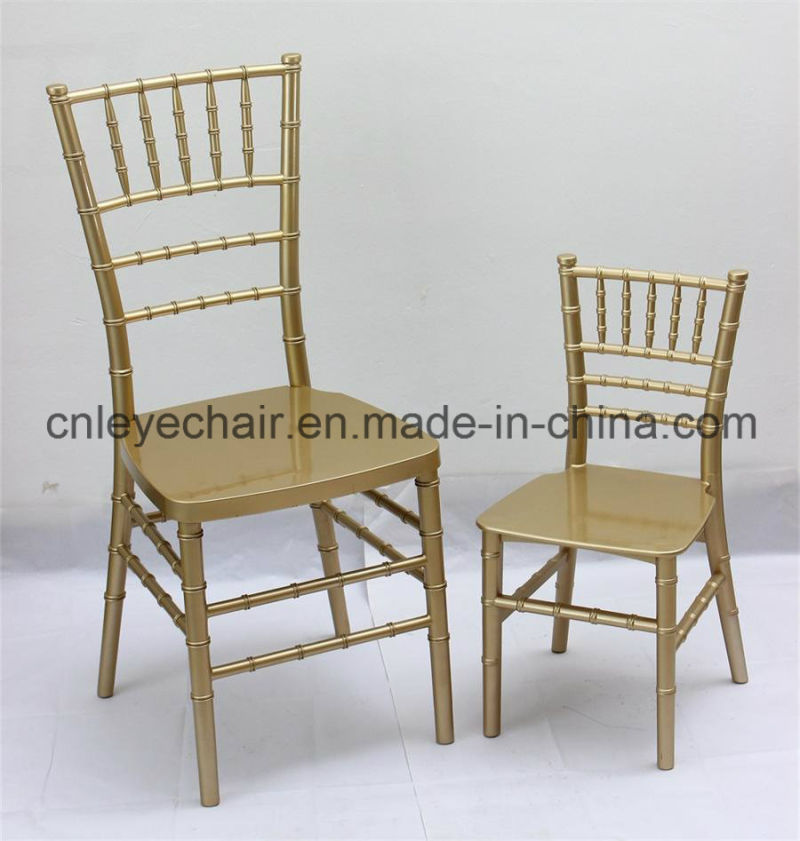 Monobloc Chair: China Monobloc Resin Chiavari Chair/Wedding Chair