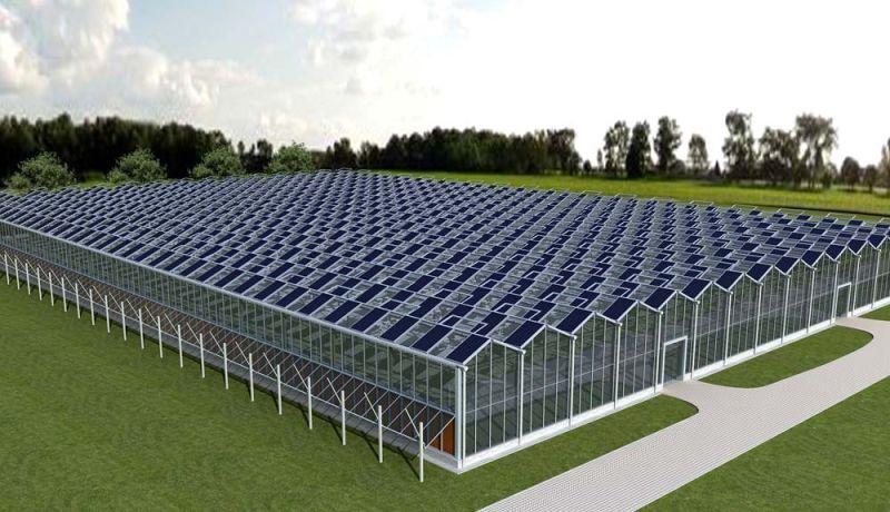 Photovoltaic Photovoltaic Greenhouse