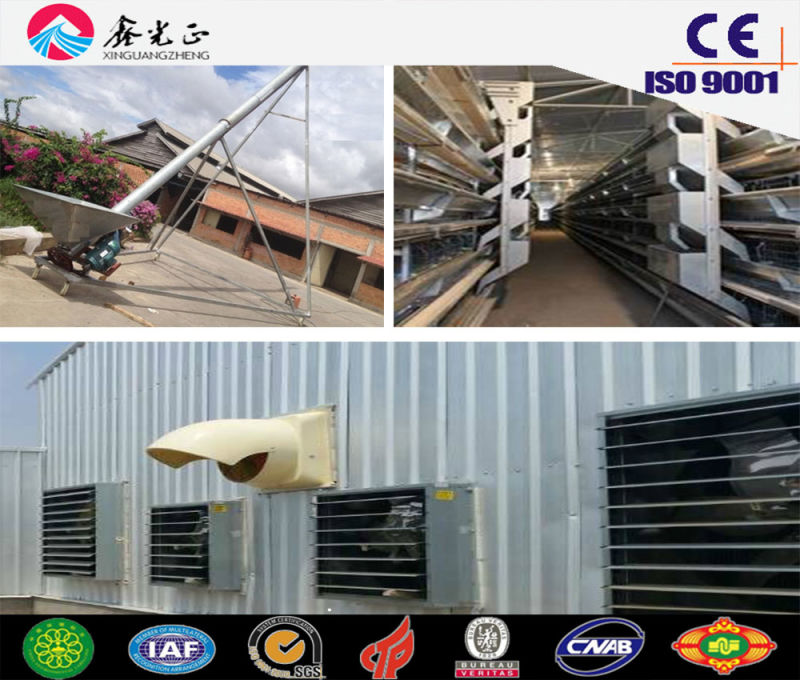 Prefabricated Steel Structure Automatic Poultry House, Chicken House with Equipments (JW-16206)