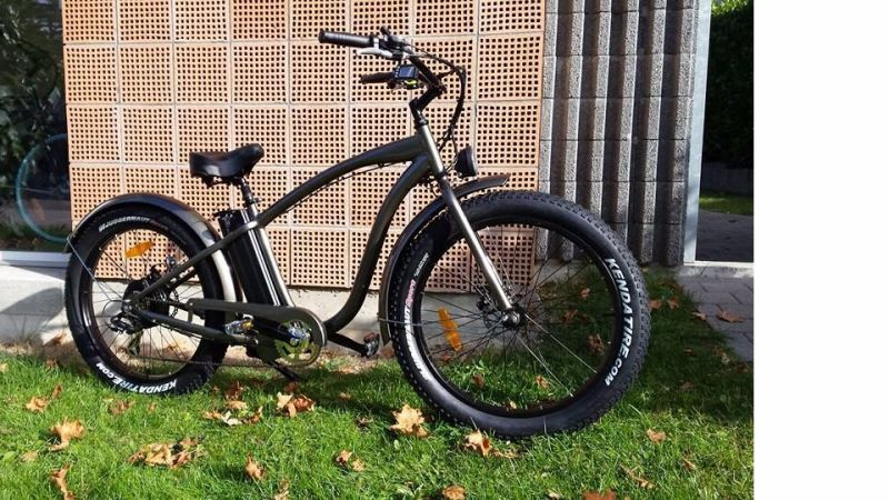 500W/750W Bafun Motor Fat Tire Wholesale Electric Bicycles