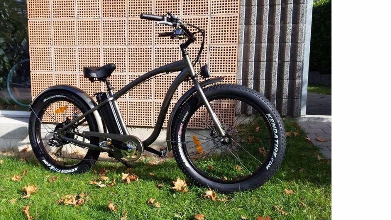 500W/750W Bafun Motor Fat Tire Wholesale Electric Bicycles
