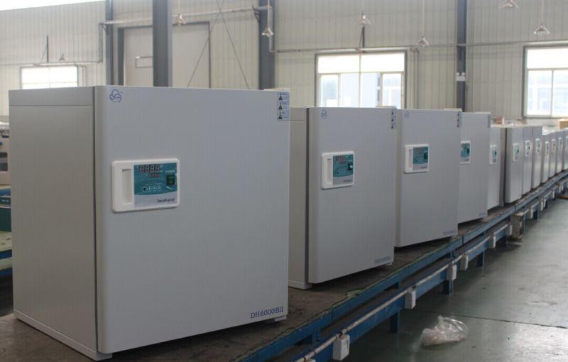 Constant-Temperature Incubator (DH3600) , Lab Incubator