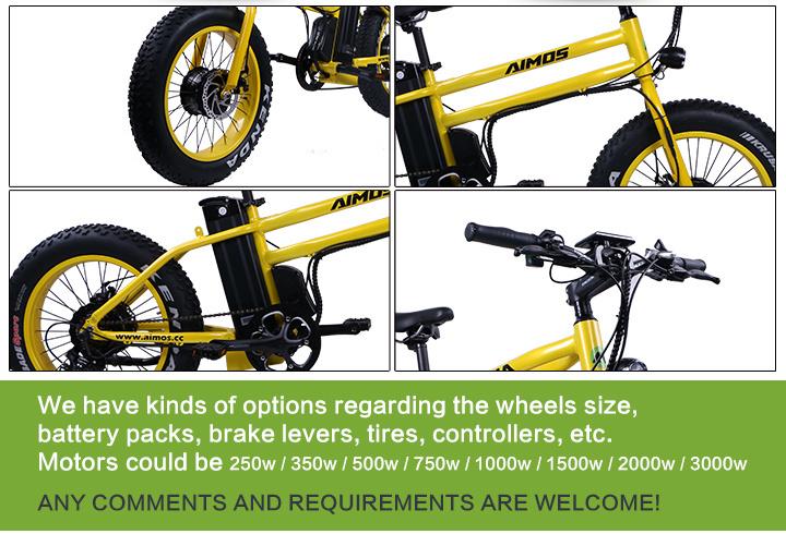 Front and Rear 500W Cheap Electric Bike E-Bike Electric Bike 1000W