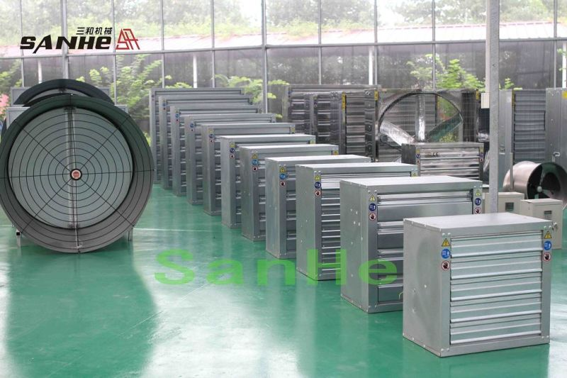China Swung Drop Hammer Ventilation Exhaust Fan 50 Djf A Type China Exhaust Fan