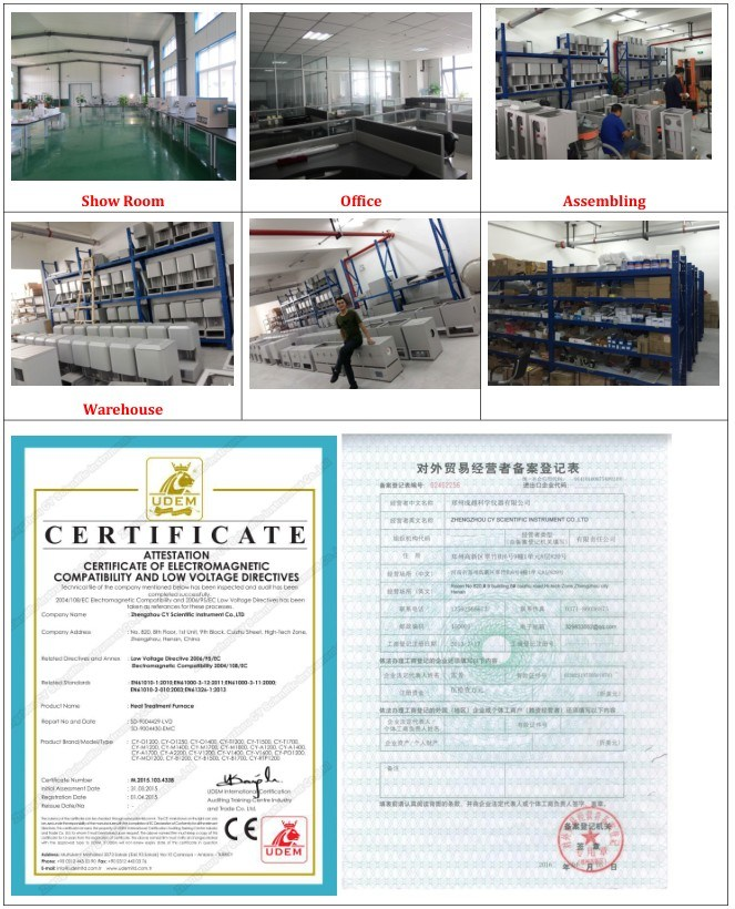 Customized Ss-316 650c High Temperature Autoclave Reactor