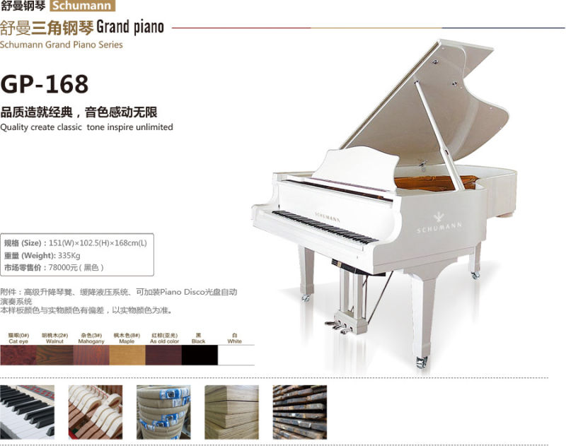 23 adult beginning gp piano