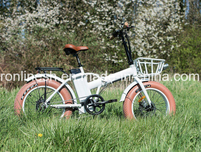 250W/500W Folding/Foldable 20X4 Fat Tyre Electric Bike/E Fat Bicycle/ Fat Pedelec/Electric Snow Bike/E Bike/Electric Bicycle CE