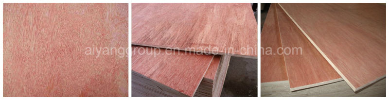 China high quality plywood for construction decoration for Furniture quality plywood