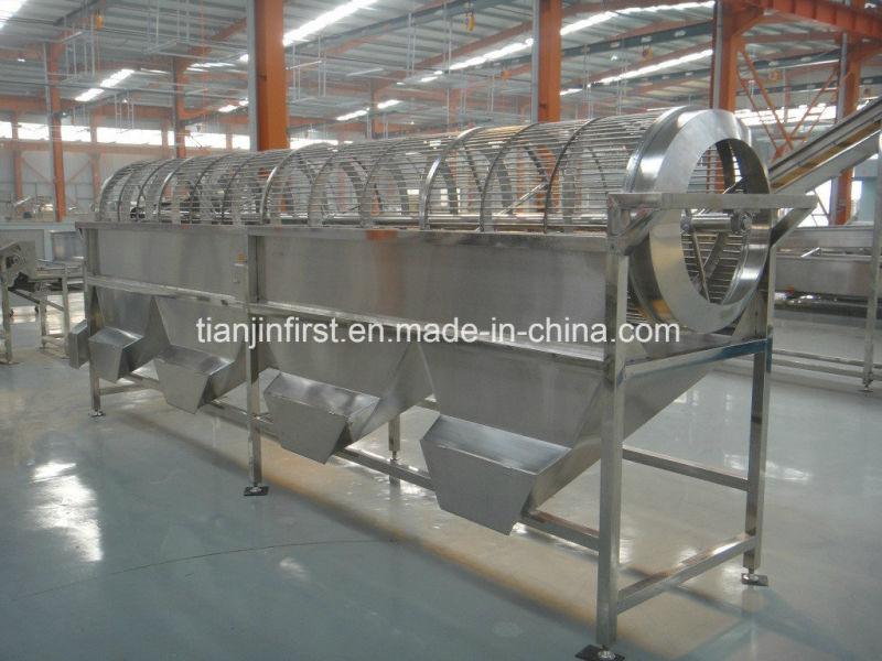 Máquinas de producción de papas fritas congeladas Línea de papas congeladas