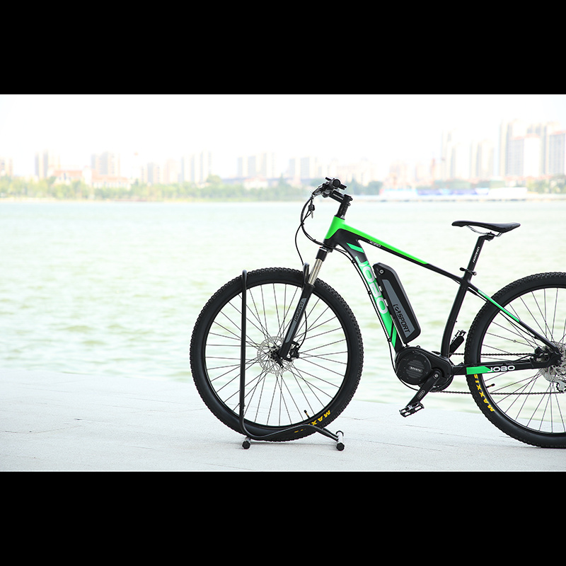 29inch Tyre Electric Bicycle Mountain Bike Dirt Bike pictures & photos