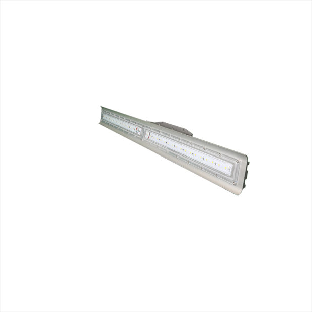 China UL C1D1 Linear Explosion Proof Light Fitting 40W 80W