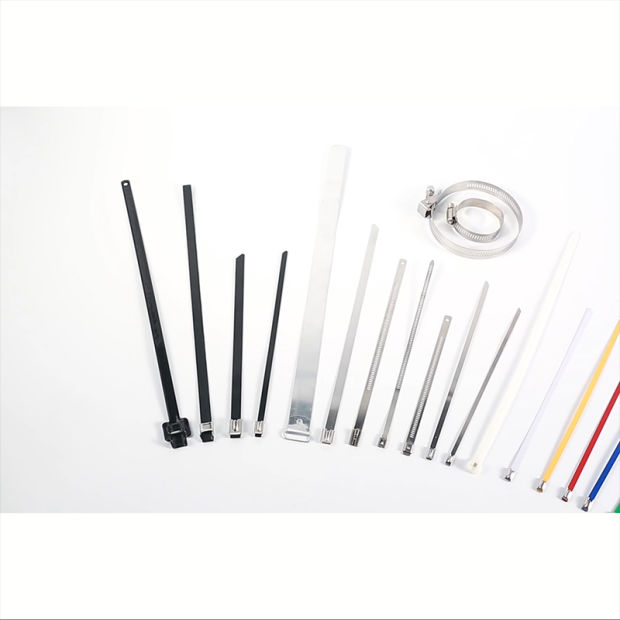 4.6X200mm SS304 Self Locking Stainless Steel Cable Tie with UL Certificate pictures & photos