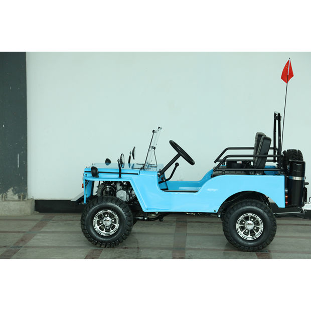 1kw Electrical Buggy Mini Jeep UTV pictures & photos