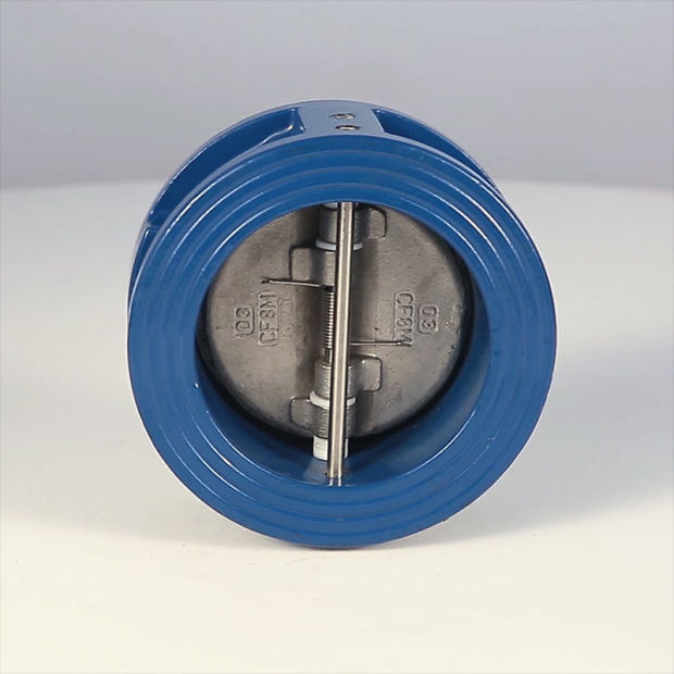 China Dual Plate Check Valve With Din And Ansi Standard