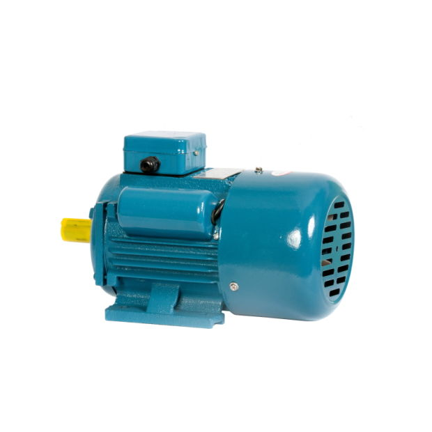 Y Series Three-Phase Asynchronous Electric/Electrical AC Motor pictures & photos