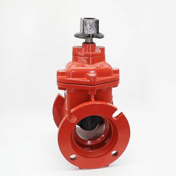 """Eccentric plug valve supplier""的图片搜索结果"""