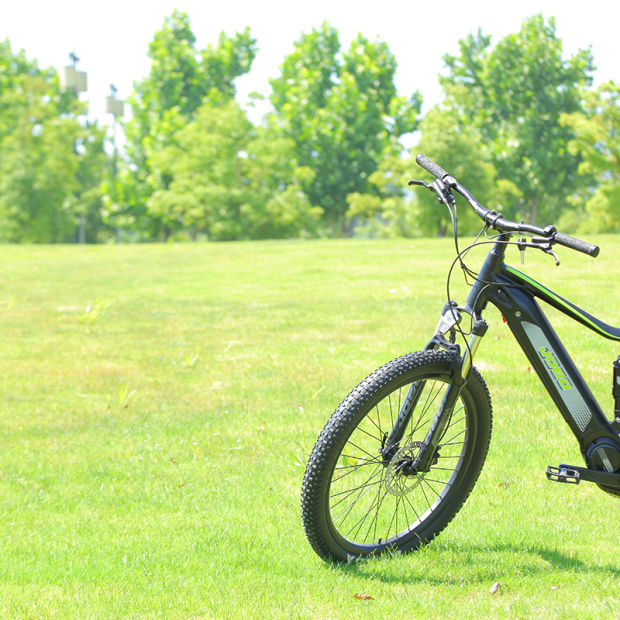 2019 Model Super Performance 48V Green Power Hidden Battery Electric Bike Chinese Mountain E Bike pictures & photos